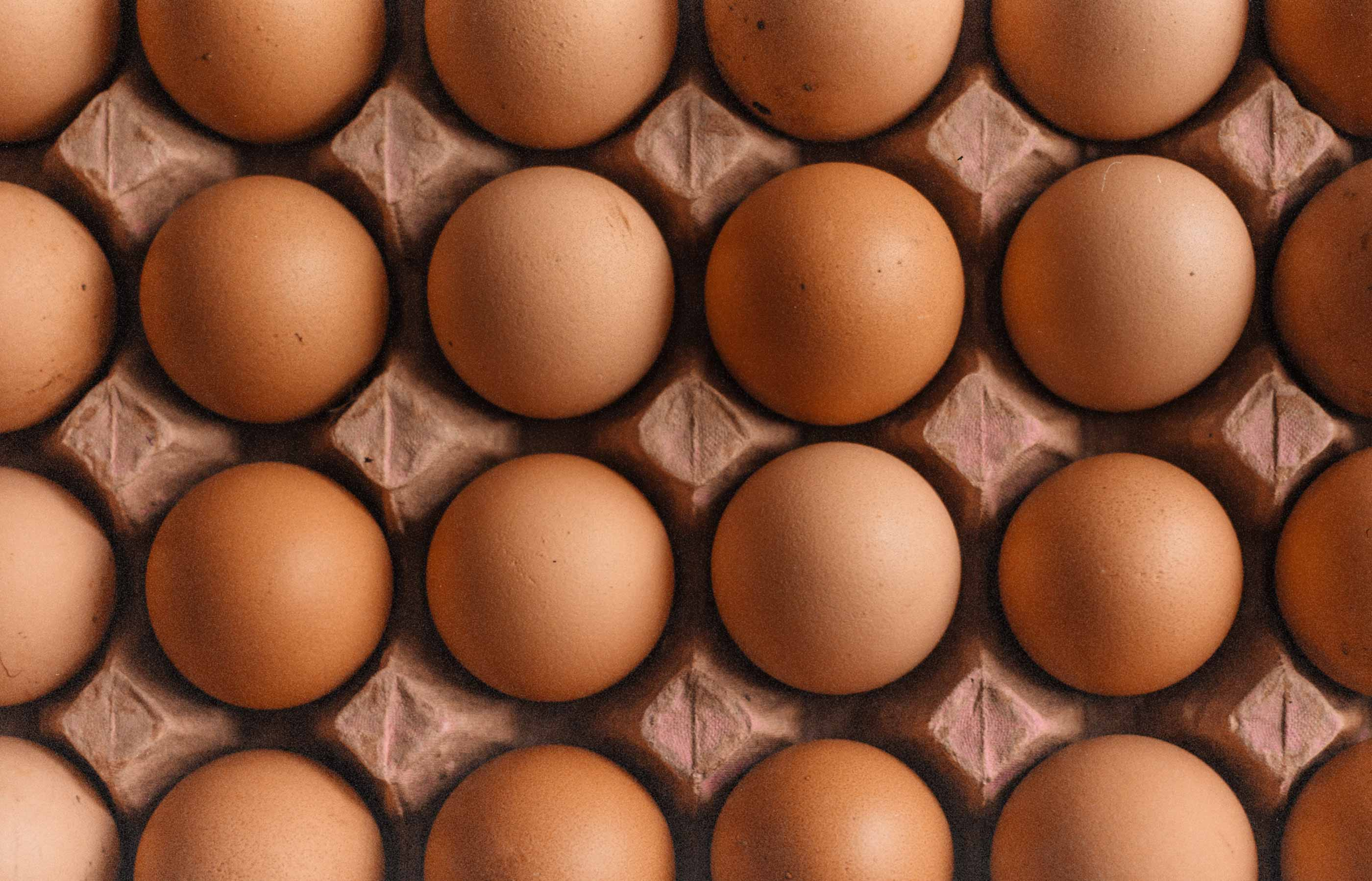 What are good high-protein foods for breakfast?