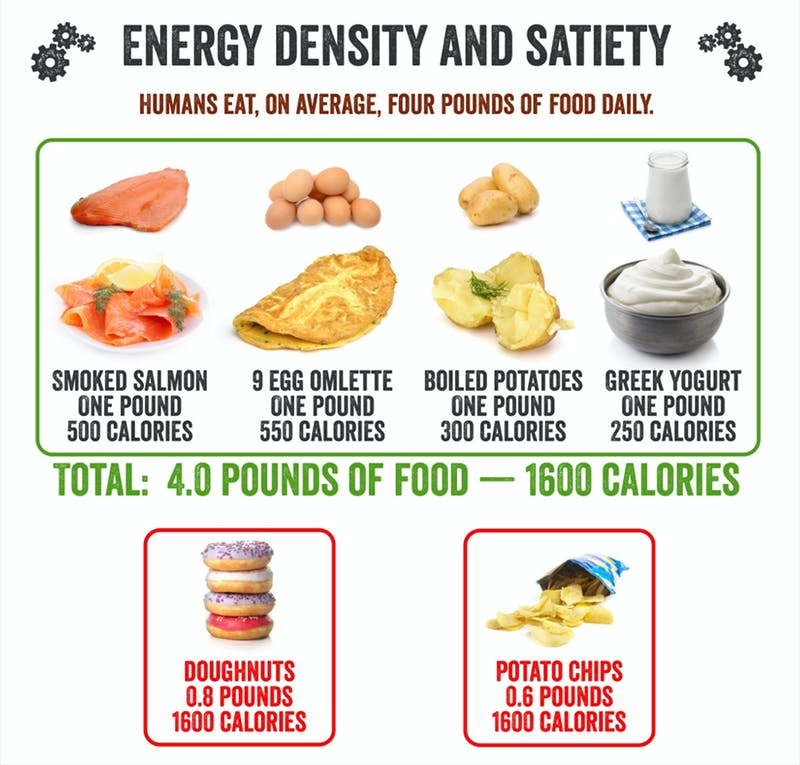Energy Density And Satiety—Pounds of Food Per Day