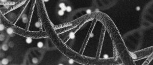 Genetics, Strength, Health, And Fitness